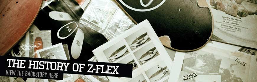 z-flex-heder