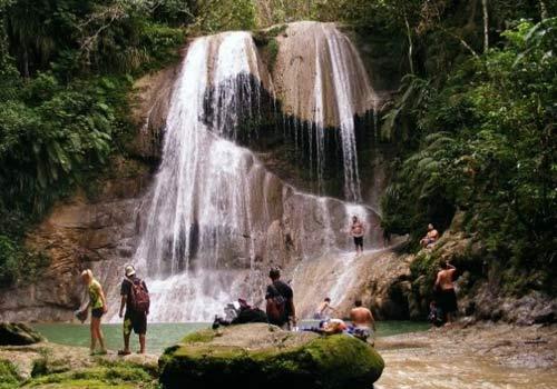 500-x-350-guajataca-downhill-forest