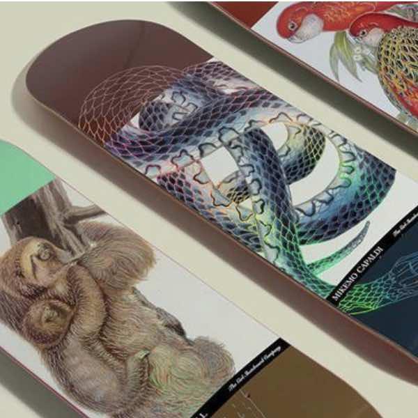 Buy Girl Skateboards Canada Online Sales Vancouver Pickup