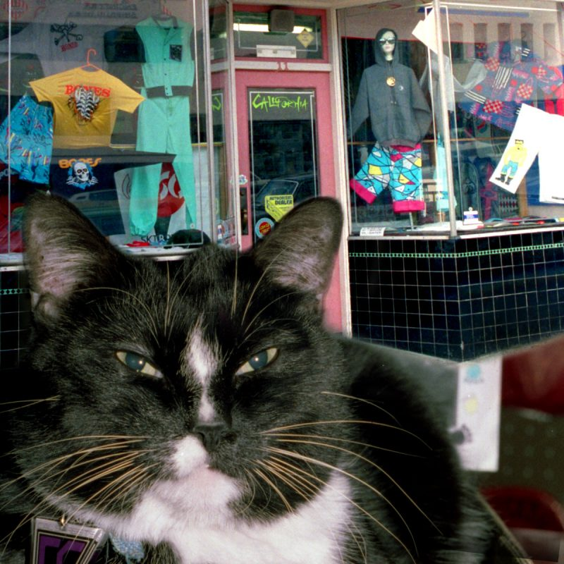 Spike The Cat CalStreets Skateshop North Vancouver 1980