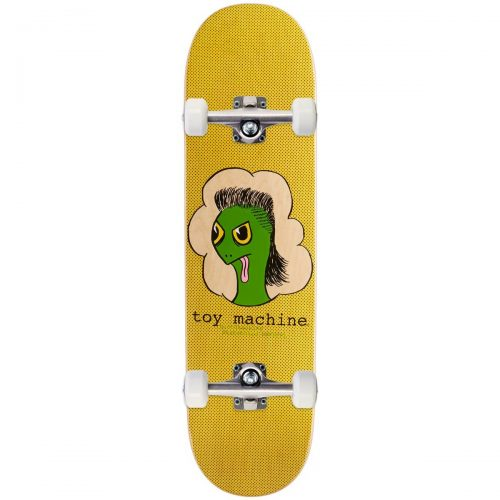 Toy Machine Skateboard Turtle Mullet Completes Canada Pickup Vancouver