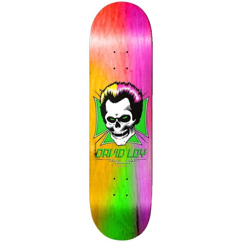 Birdhouse Skateboards David Loy Rainbow Skull Canada Online Sales Vancouver Pickup