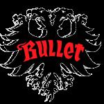 Bullet Skateboard Trucks