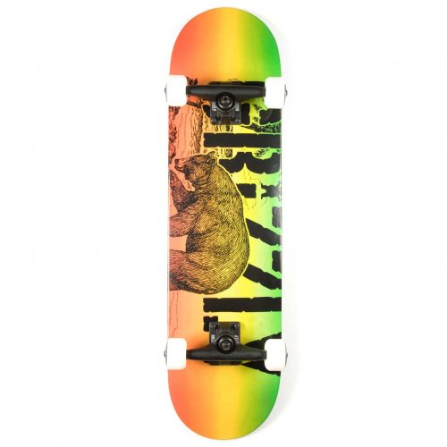 Grizzly Complete Paradise 7.75 Skateboard Canada Online Sales Vancouver Pickup Warehouse Distributor