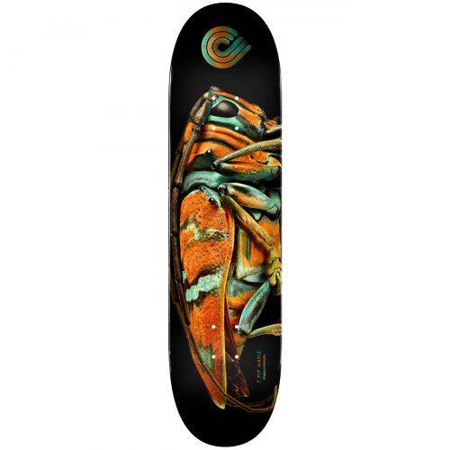 Powell Peralta Flight® Skateboard Deck BISS Jewel Beetle Shape 248 9 Canada Online Sales Vancouver Pickup Warehouse Distributor