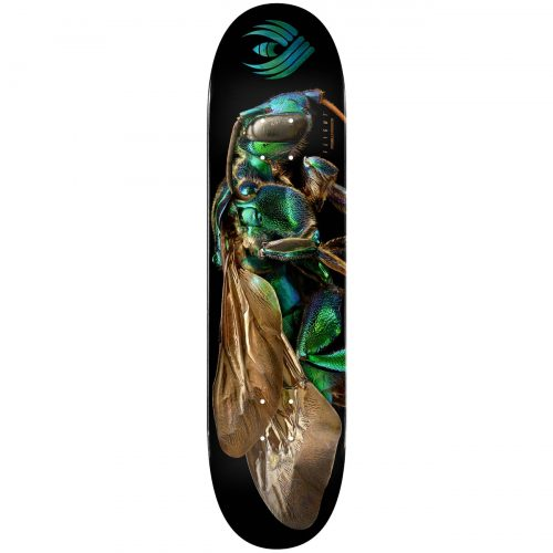 Powell Peralta Flight® Skateboard Deck BISS Cuckoo Bee Shape 242 8.0 Canada Online Sales Vancouver Pickup Warehouse Distributor