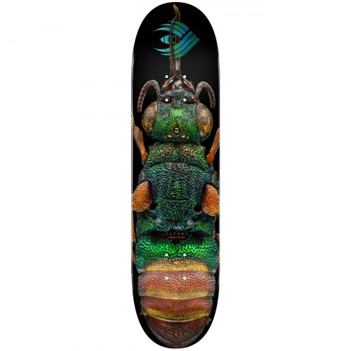 Powell Peralta Flight® Skateboard Deck BISS Ruby Tailed Wasp Shape 244 8.5 Canada Online Sales Vancouver Pickup Warehouse Distributor