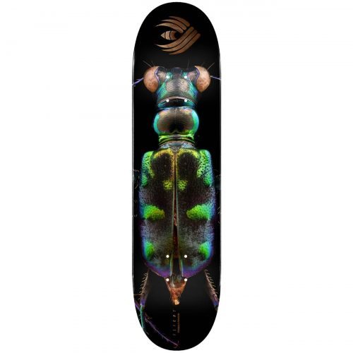 Powell Peralta Flight® Skateboard Deck BISS Tiger Beetle Shape 248 8.25 Canada Online Sales Vancouver Pickup Warehouse Distributor