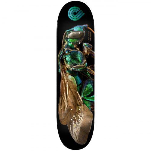 Powell Peralta BISS Cuckoo Bee Skateboard Deck Shape 242 K20 8 x 31.45 Skateboard Canada Pickup Vancouver