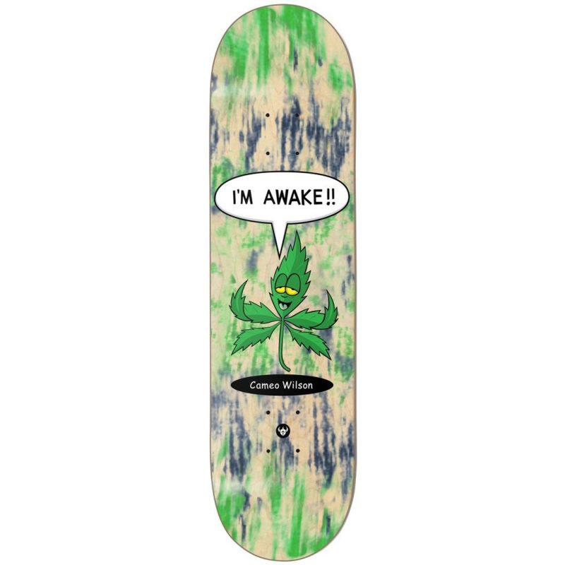 Darkstar Cameo Wilson Awake Deck 8.25 x 31.9 Green Skateboard Canada Pickup Vancouver