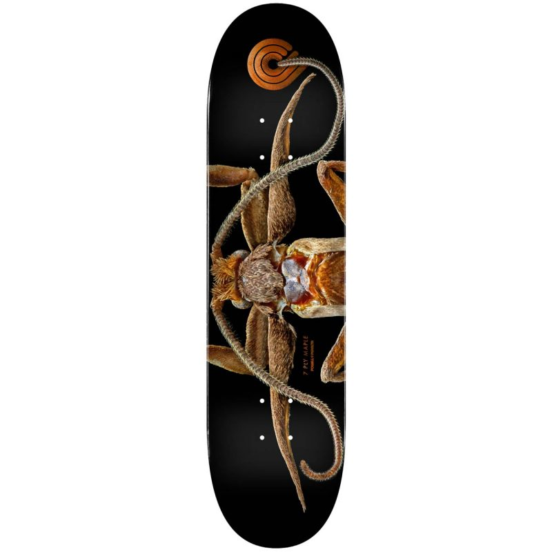 Powell Peralta BISS Marion Moth Skateboard Deck Shape 243 8.25 x 31.95 Canada Pickup Vancouver