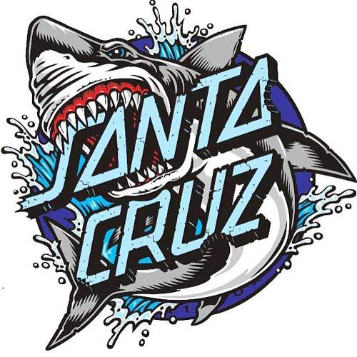 Buy Santa Cruz Complete Skateboards Online Canada pickup Vancouver